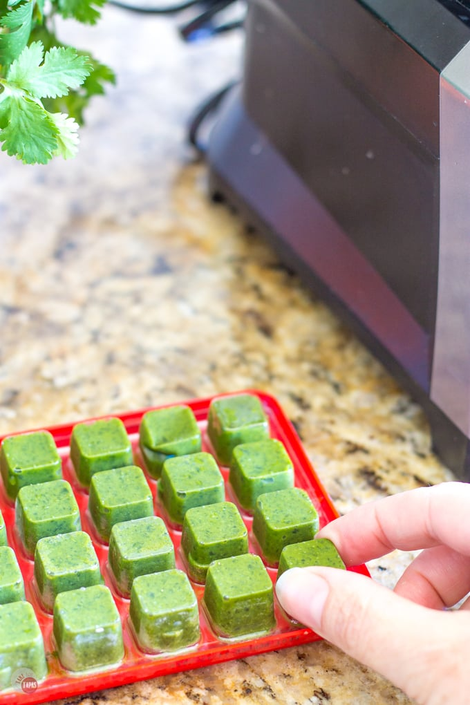 Pineapple Ginger Prosecco Punch Recipe made easy with these cilantro cubes | Take Two Tapas | #Pineapple #Ginger #Prosecco #punch #Brunch #largebatch #Entertaining #easydrinks