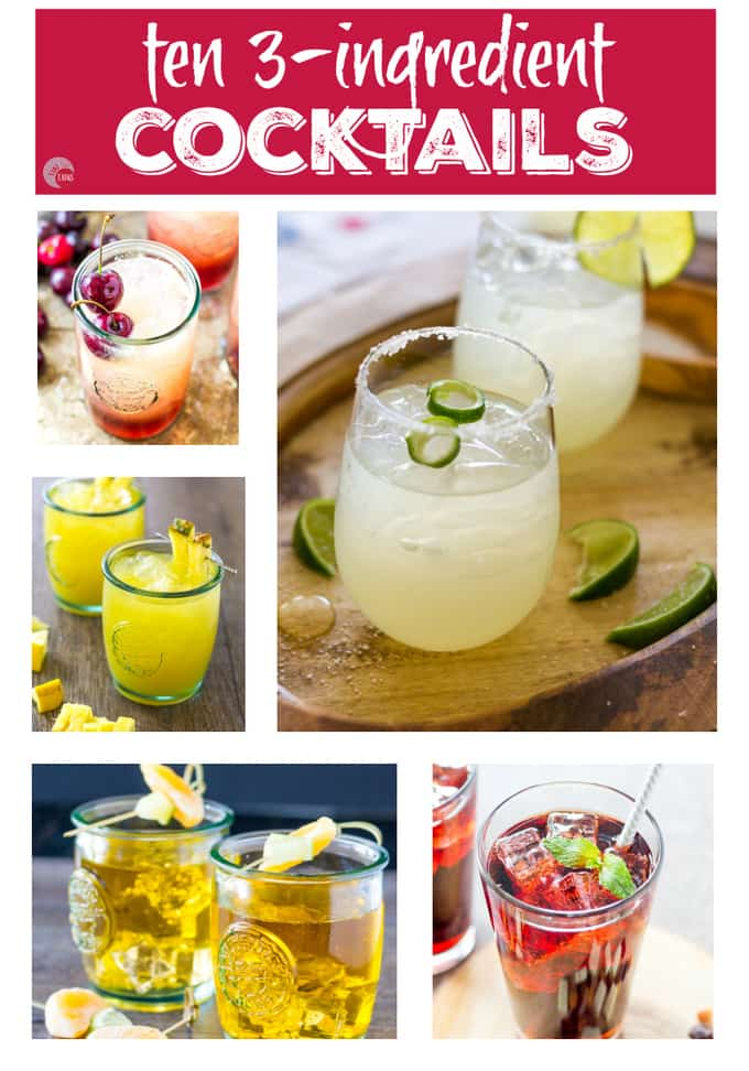 Ten 3 Ingredient Cocktails Pin Square | Take Two Tapas