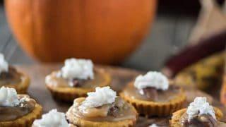 Mini Pumpkin Pecan Cheesecakes