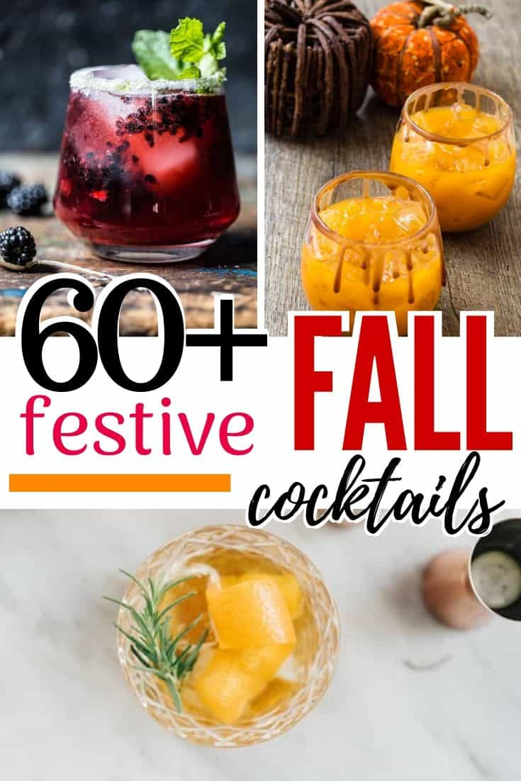 pinterest image for fall cocktails
