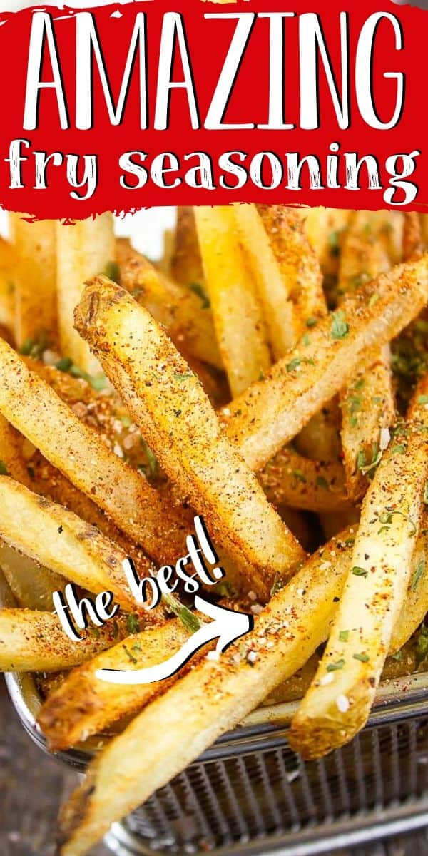 """Pinterest image of fry seasoning on french fries with text """"amazing fry seasoning - the best!"""""""