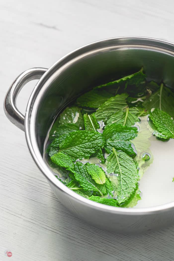 mint floating in a pot