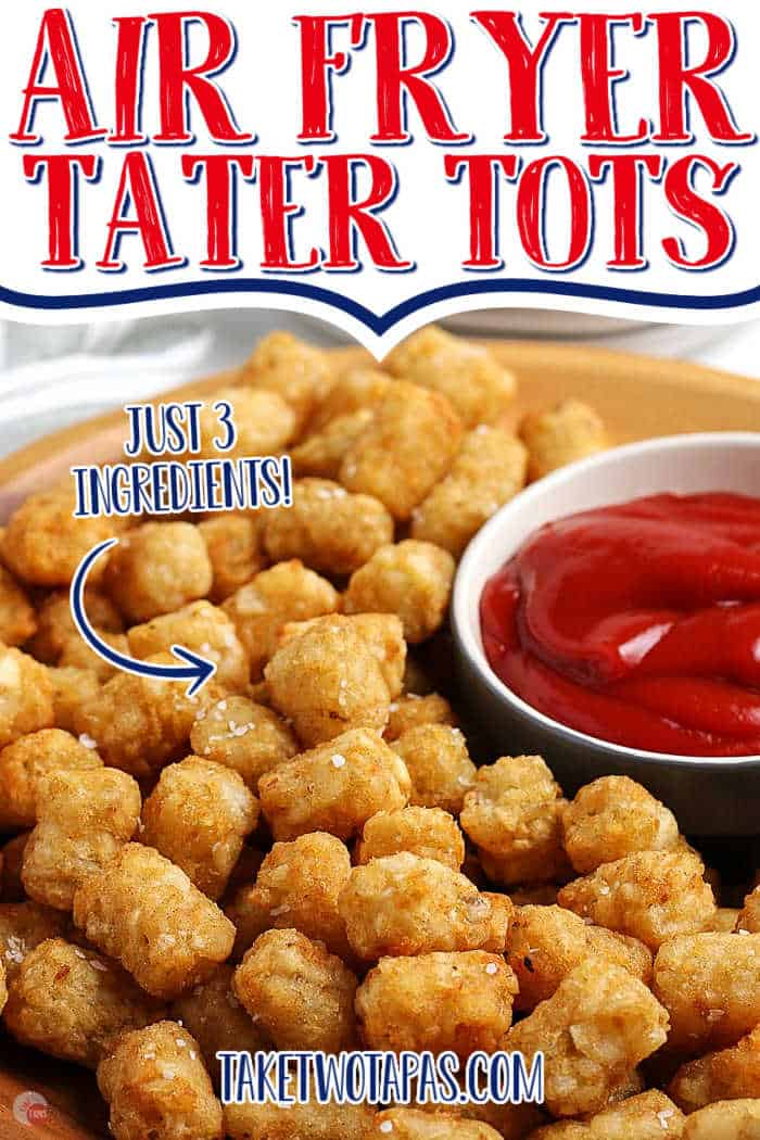 "tater tots with text ""air fryer just 3 ingredients"""