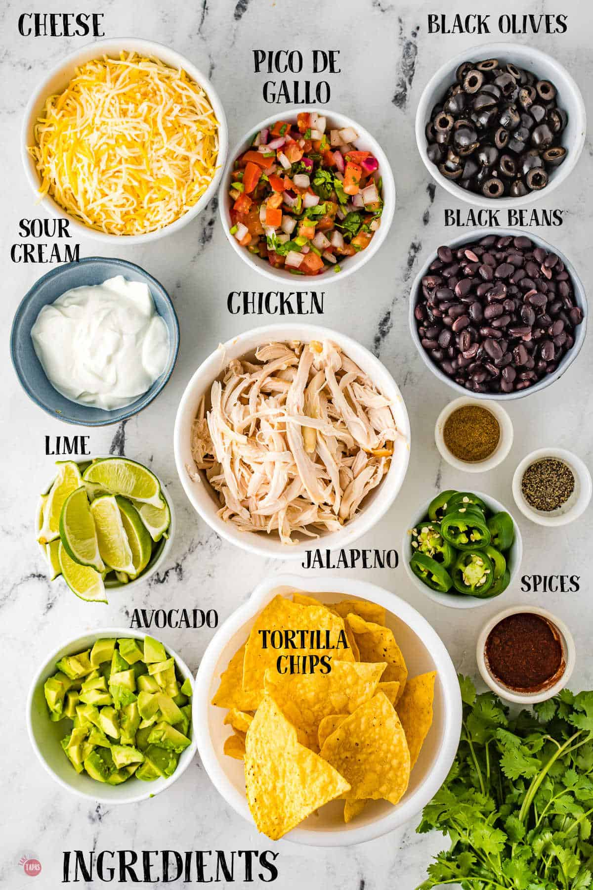 labeled picture of chicken nachos