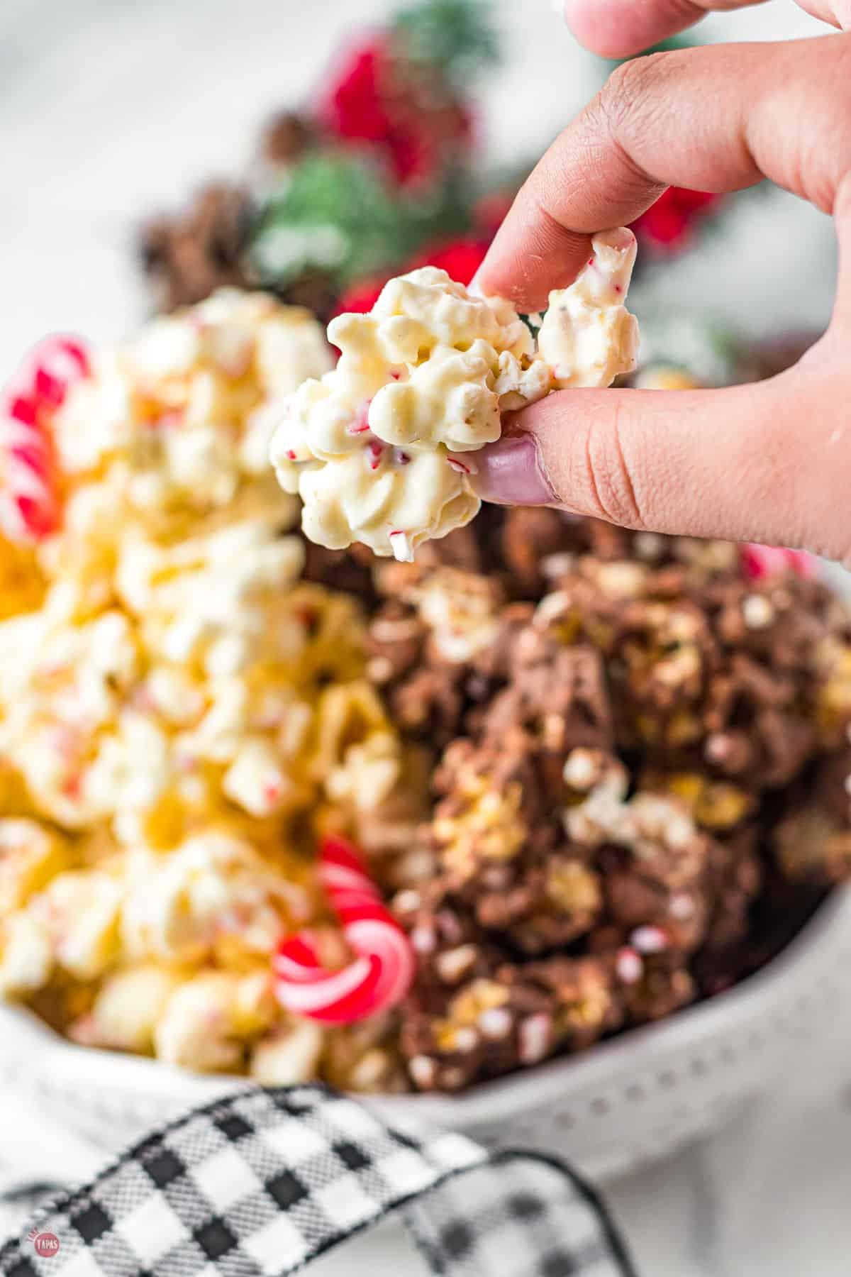 hand holding piece of popcorn